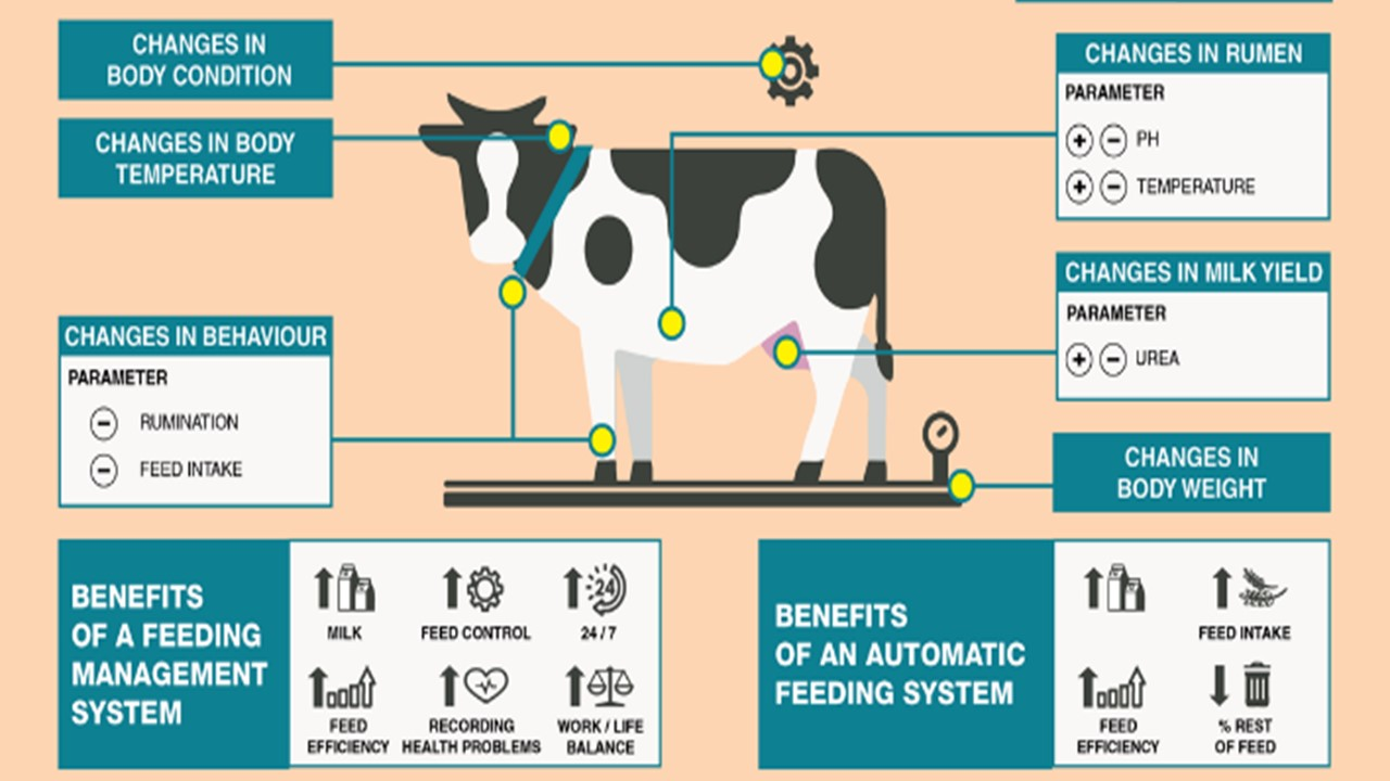 Seeking cattle livestock management system (integrated with existing infosystem)