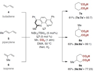 Adipic acid(s) prepared by catalytic carboxylation of 1,3-butadiene