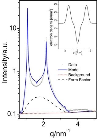 Software for Analysing Supramolecular Self-Assemblies
