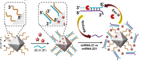 miRNA-Responsive Drug-Loaded NMOFs for the Targeted Treatment  of Cancer