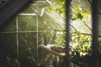 Seeking European partners to develop detection application(s) for greenhouse sector