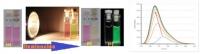 Kit de detección de drogas y sustancias tóxicas